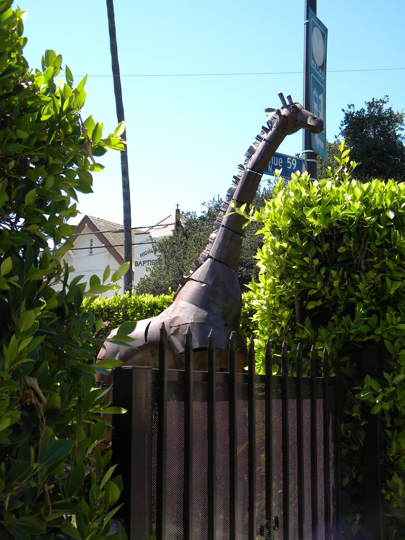 Giraffe120